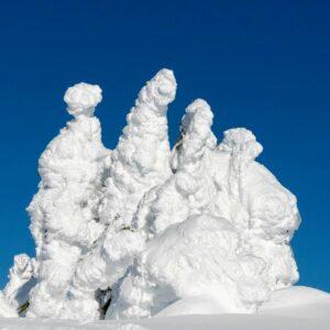 Snowform - photo by Charles Kosina